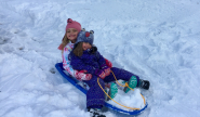 2017 Aly and Lily on sled