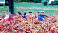 Takundewide Cottages Autumn leaf pile